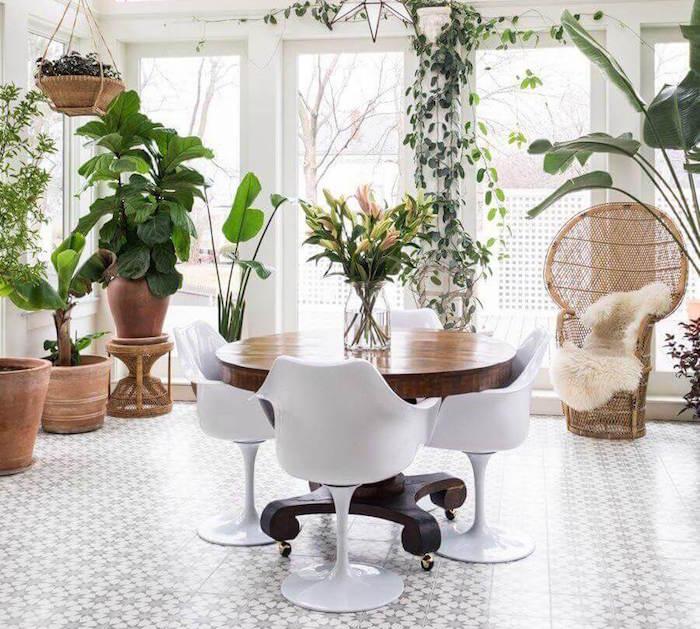 Zimmerpflanzen gekonnt arrangieren