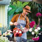 Eklektisch wohnen: Das Zuhause von Designer und Florist Dylan Tripp