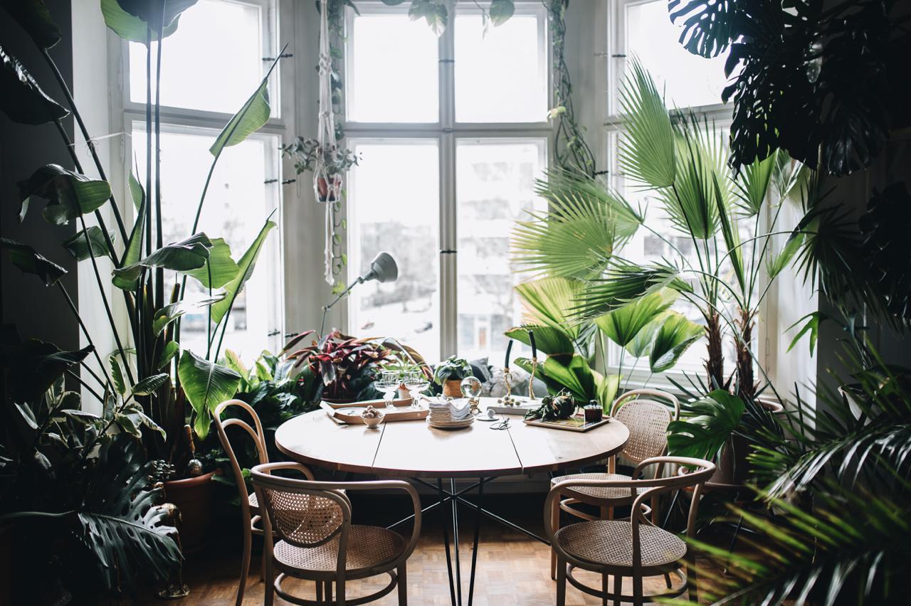 plant-tribe-tim-labenda-berlin-germany
