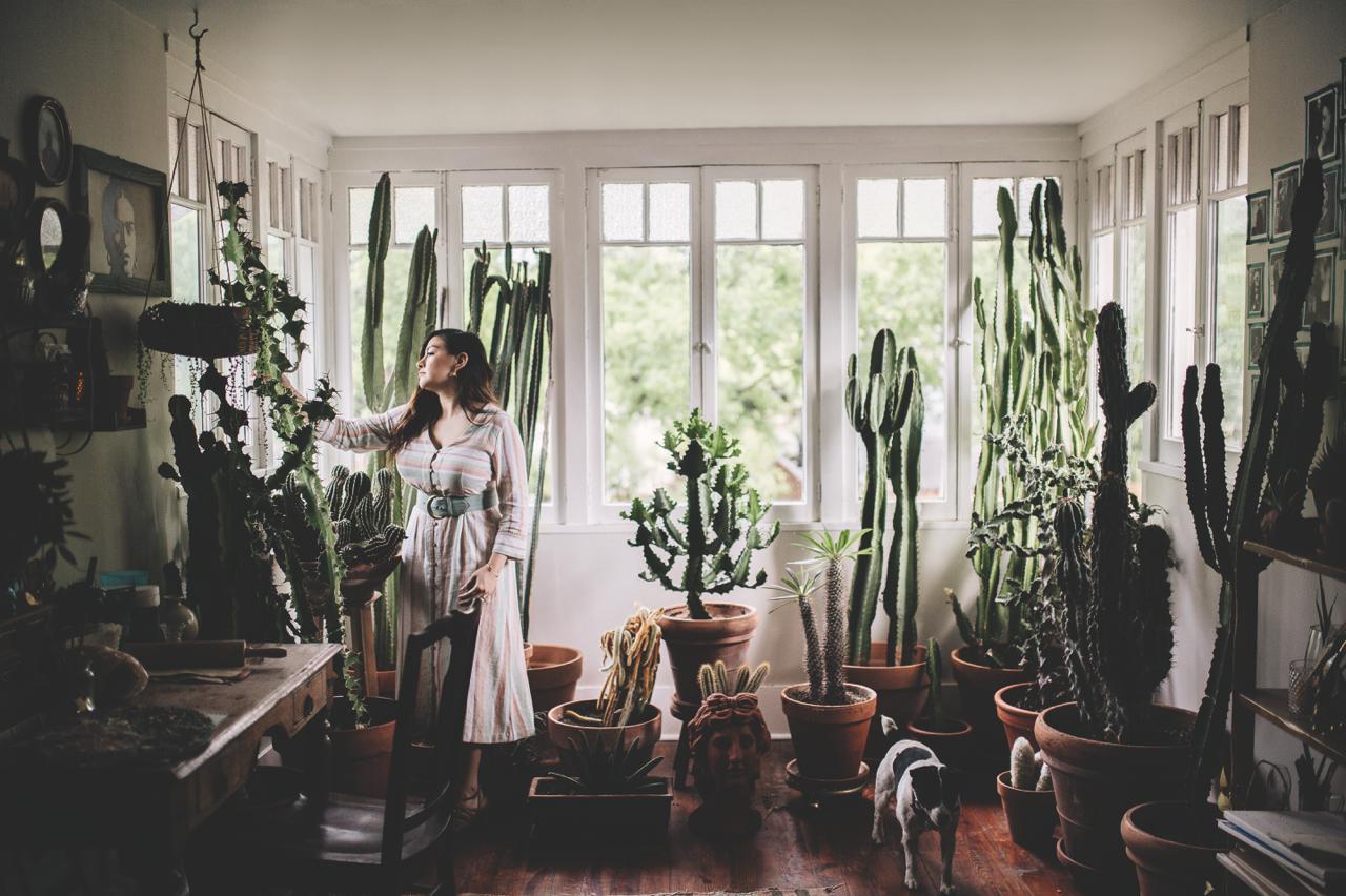 plant-tribe_zimmerpflanzen-urban-junge-bloggers_julesvillebrandt_decohomeolive_dallas