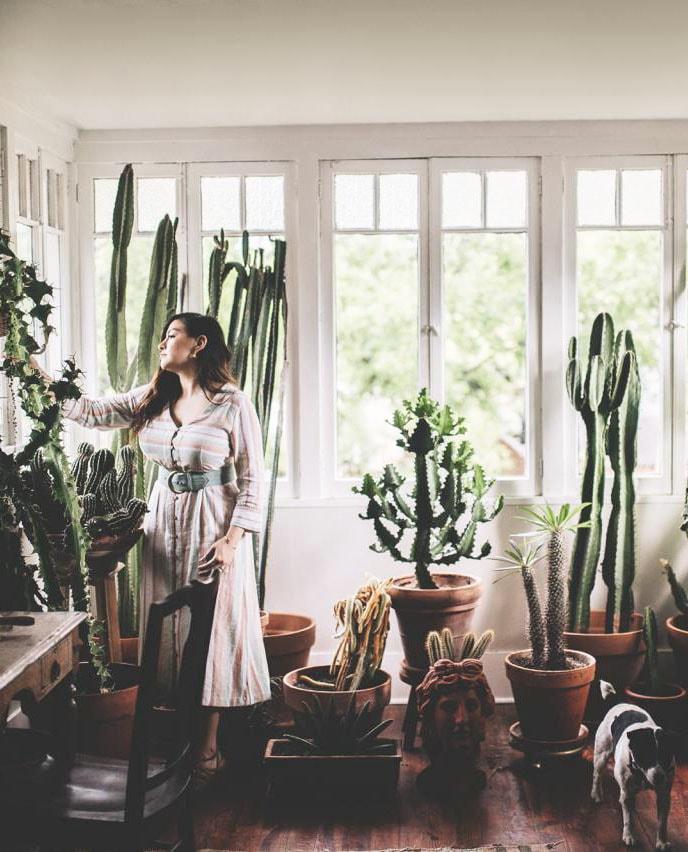 plant-tribe_zimmerpflanzen-urban-junge-bloggers_julesvillebrandt_decohomeolive_dallas_titel